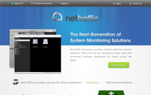 NetTraffic Website